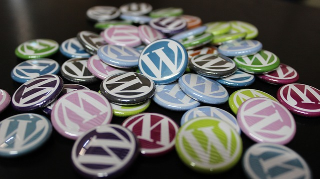 WordPress Site Development Services