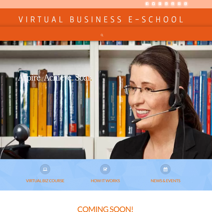 Virtual E-School - The online learning center for virtual business startups.
